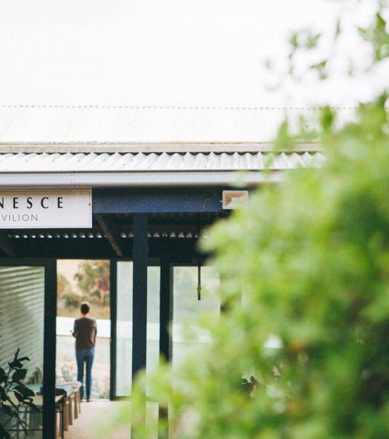 Claret Ash Farm | Janesce NZ and Australia